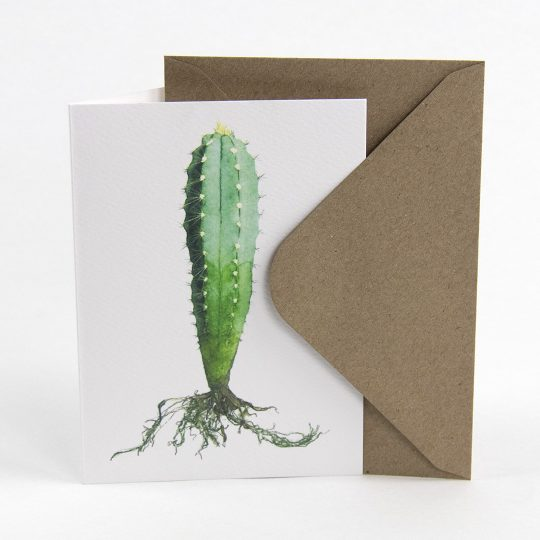 Sprout - Illustrated cactus postcard