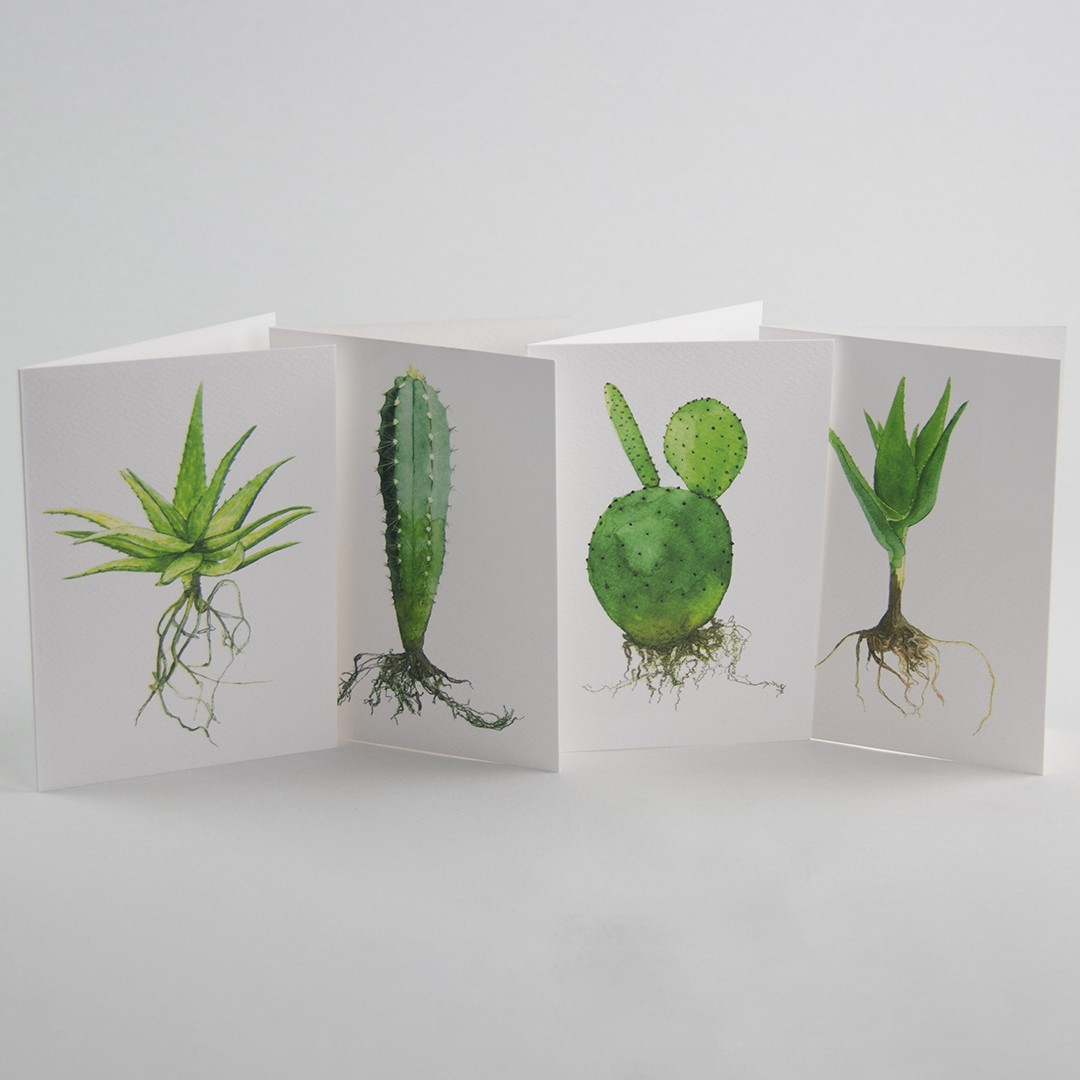 Selection of illustrated plant postcards by Sprout