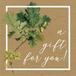 Gift card from Botanopia. Photo
