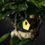 Picture of a brass tiny bird house