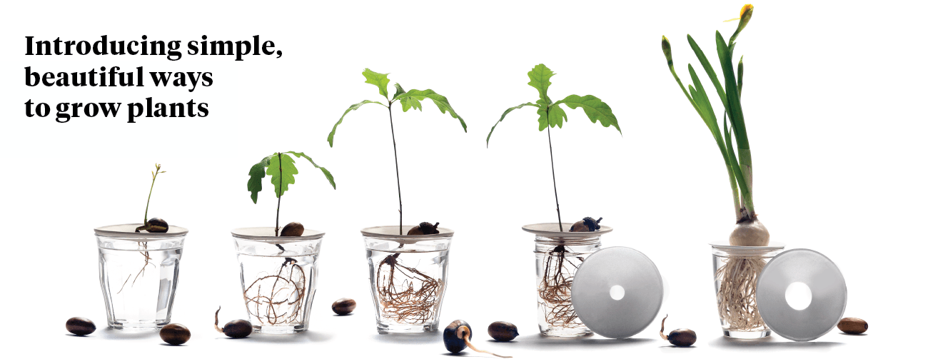 Introducing simple, beautiful ways to grow plants