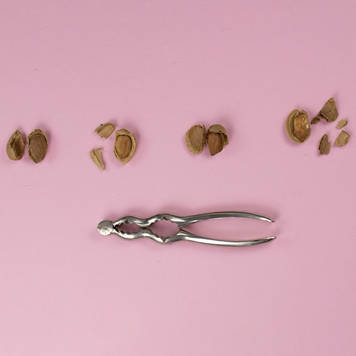 Botanopia how to germinate almonds in water